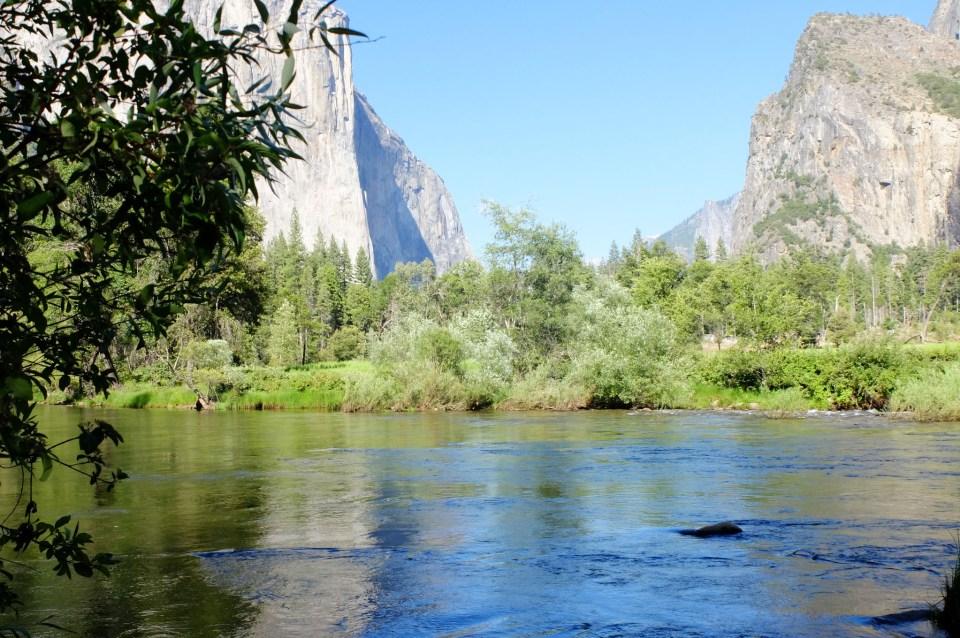 Yosemite National Park 29