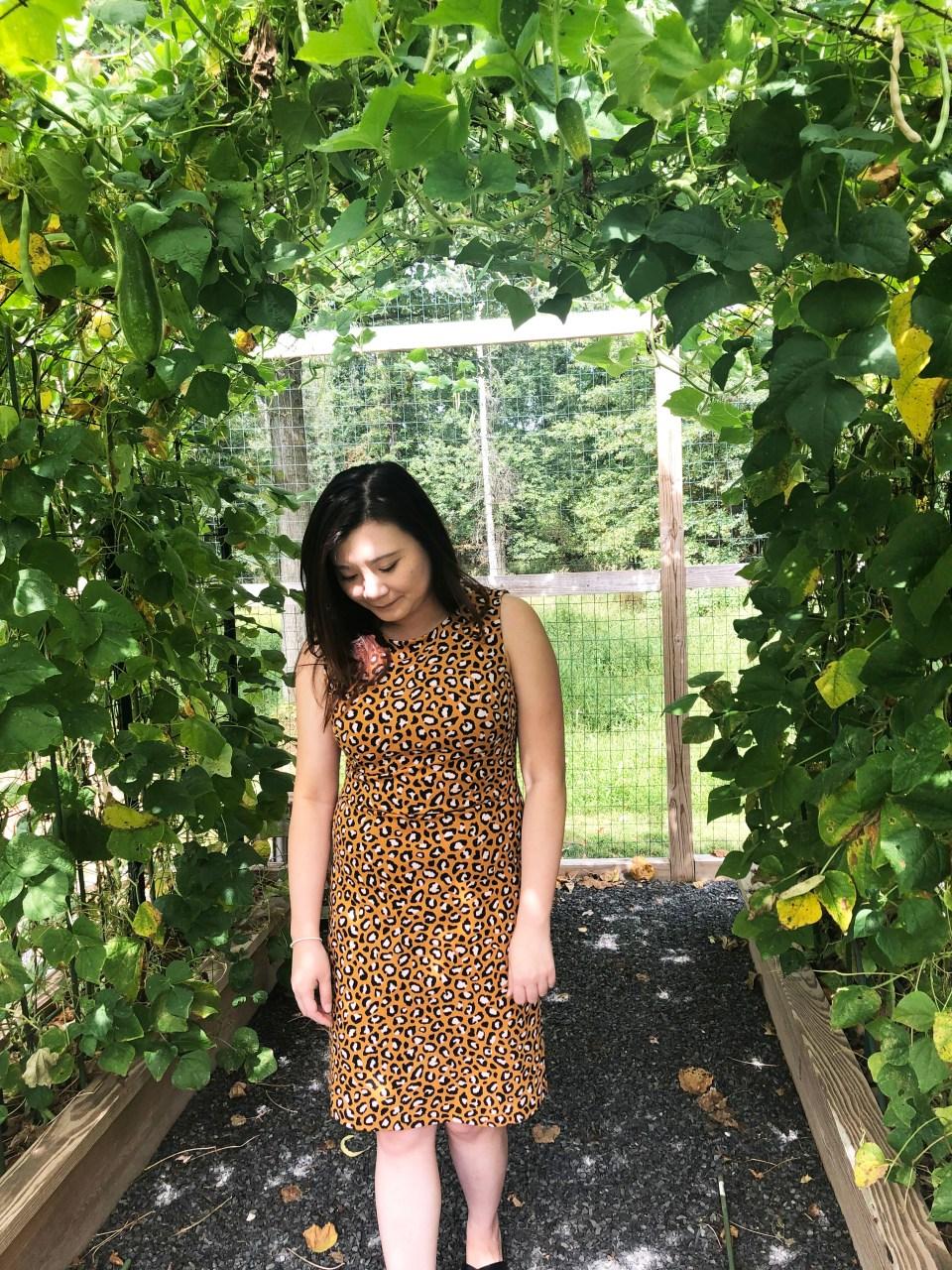 Leopard Sheath Dress 13