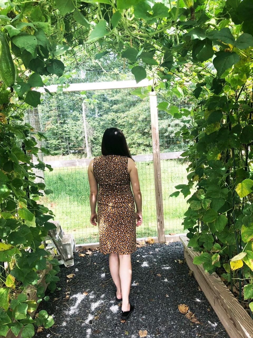 Leopard Sheath Dress 6