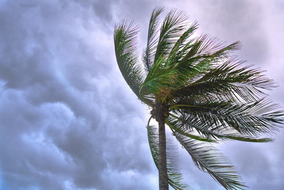 beach-beautiful-cloudy-1030320