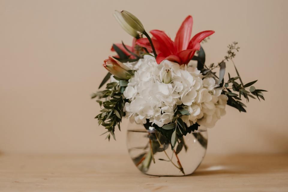 beautiful-bloom-blooming-1573802