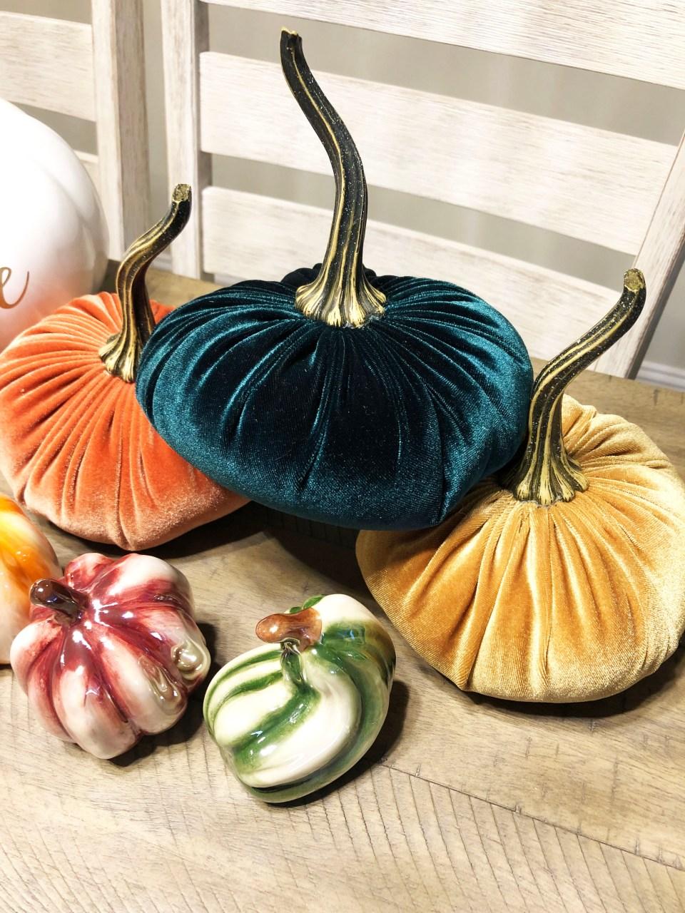 Velvet Pumpkins 3