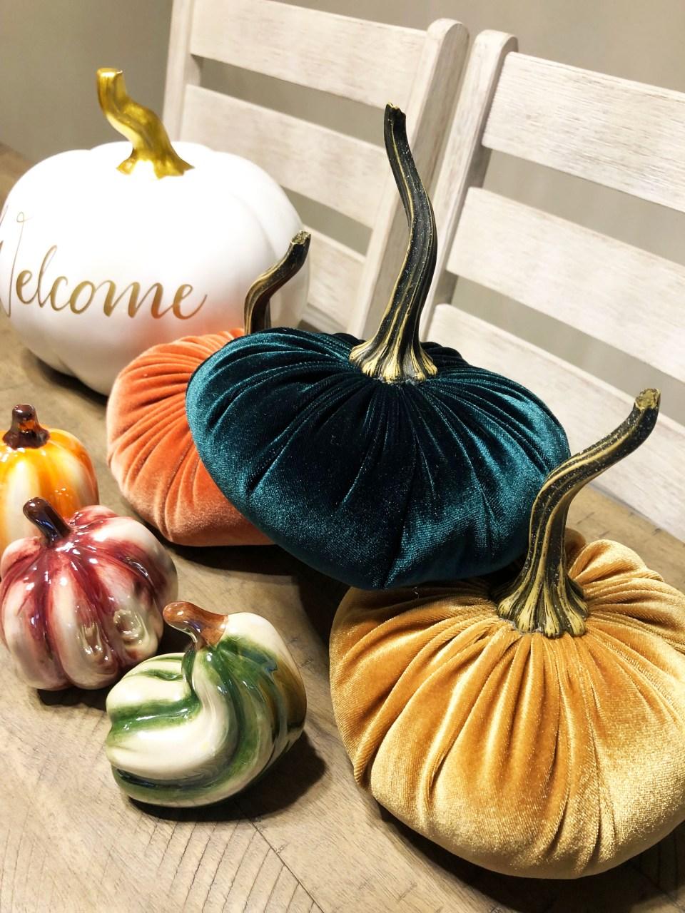 Velvet Pumpkins 6
