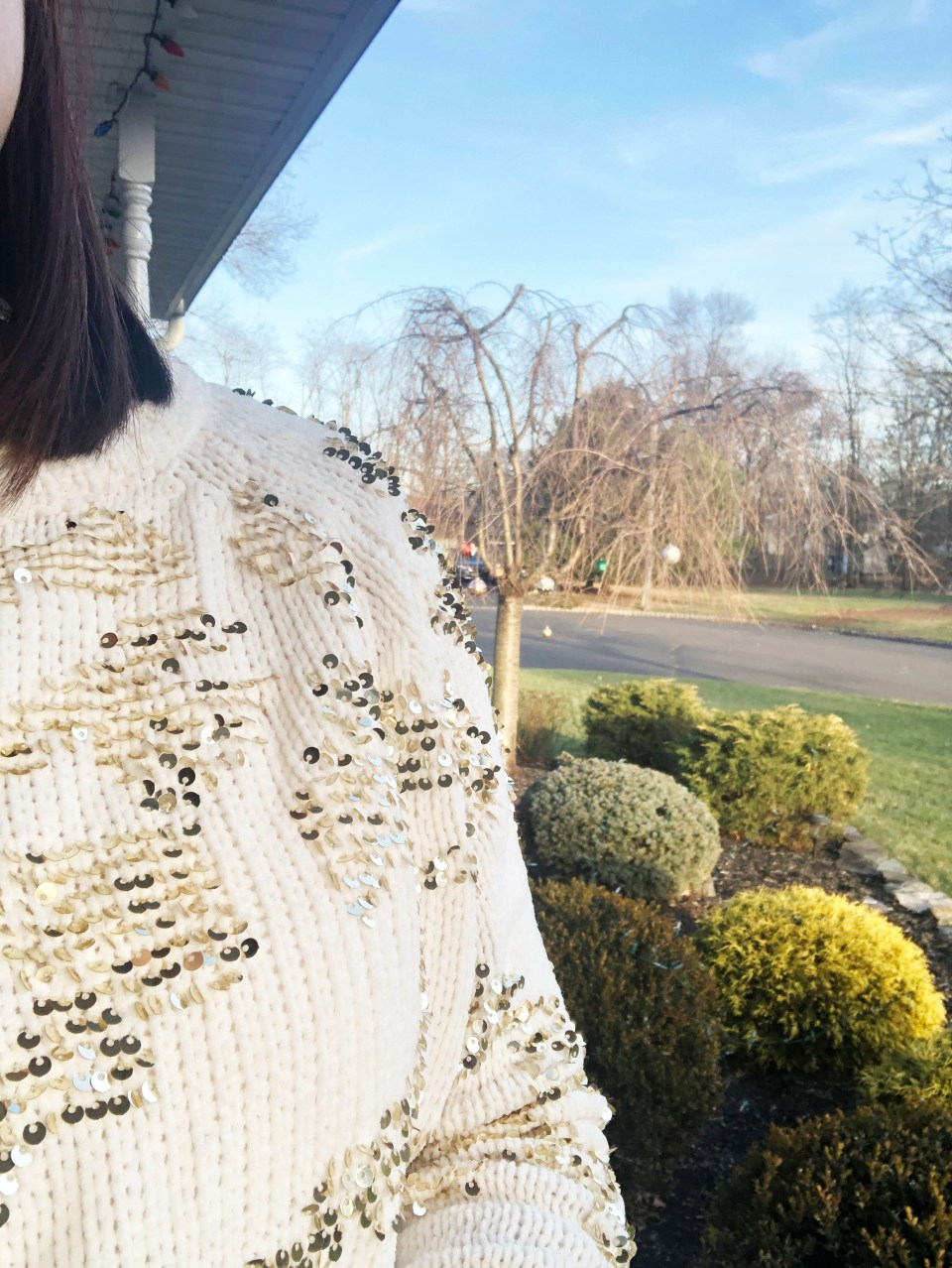 Gold Sequin Sweater 20