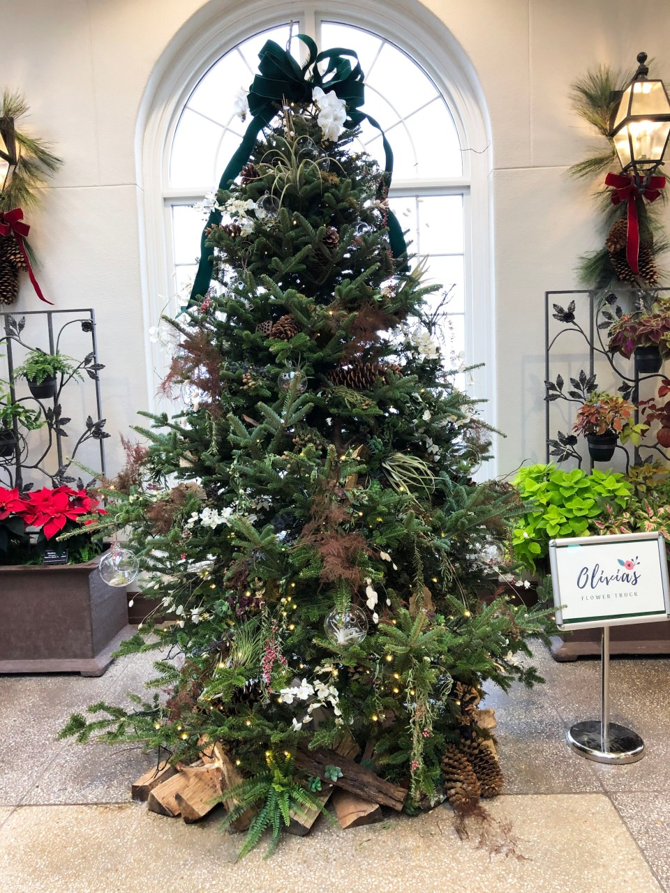 Hershey Gardens - Christmas Tree Showcase