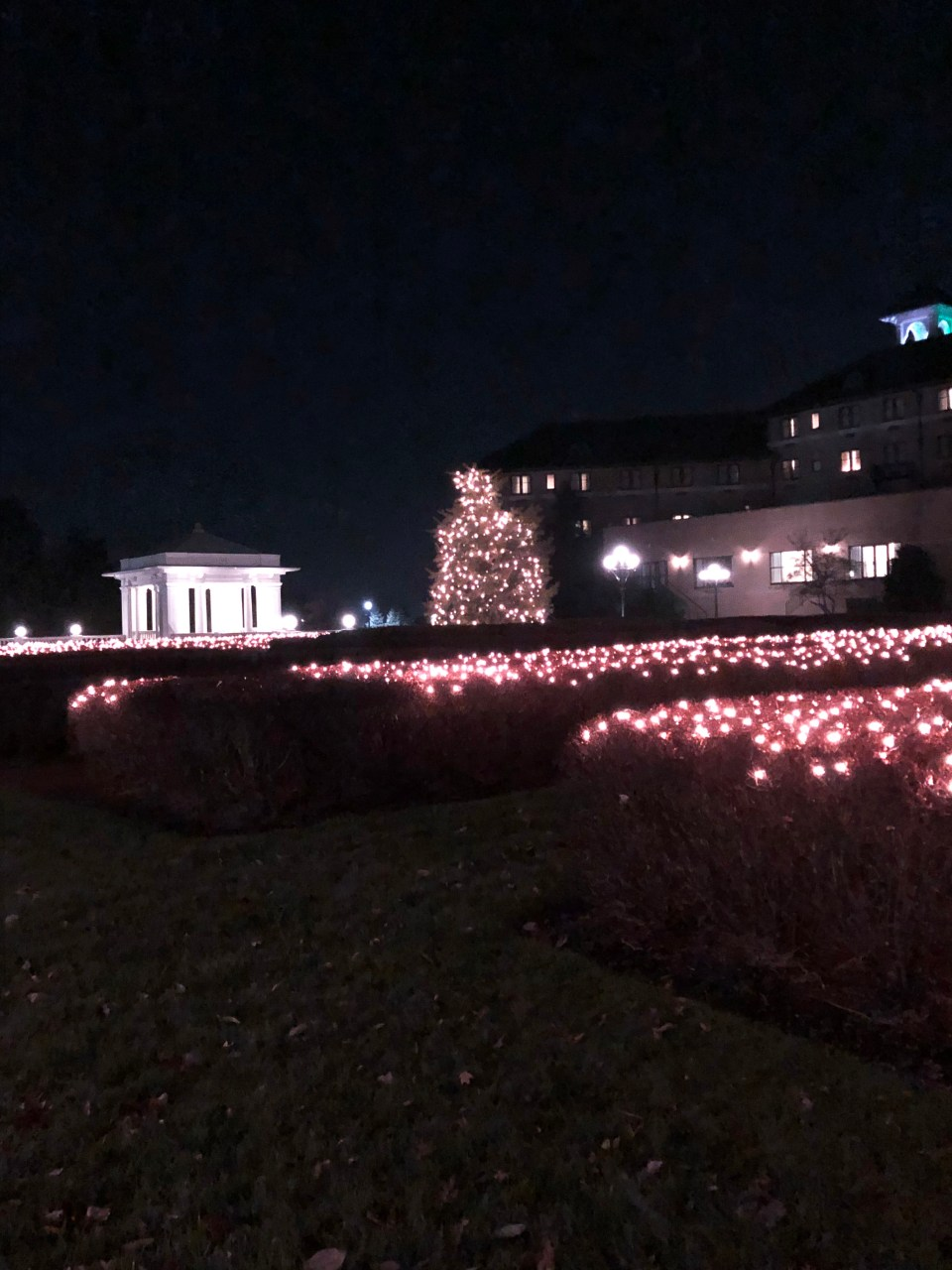Hotel Hershey - Christmas 6