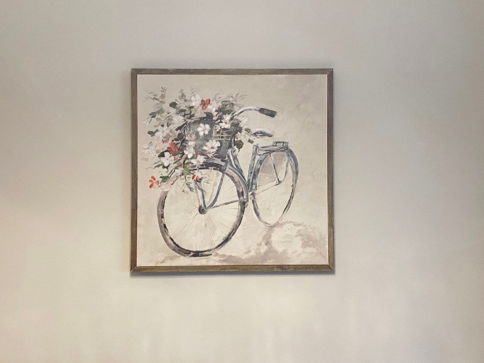 Bicycle Painting 1