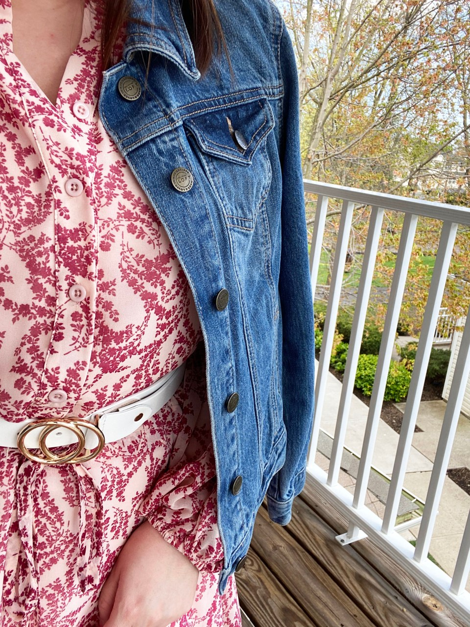 Grapevine Dress + Denim Jacket 14