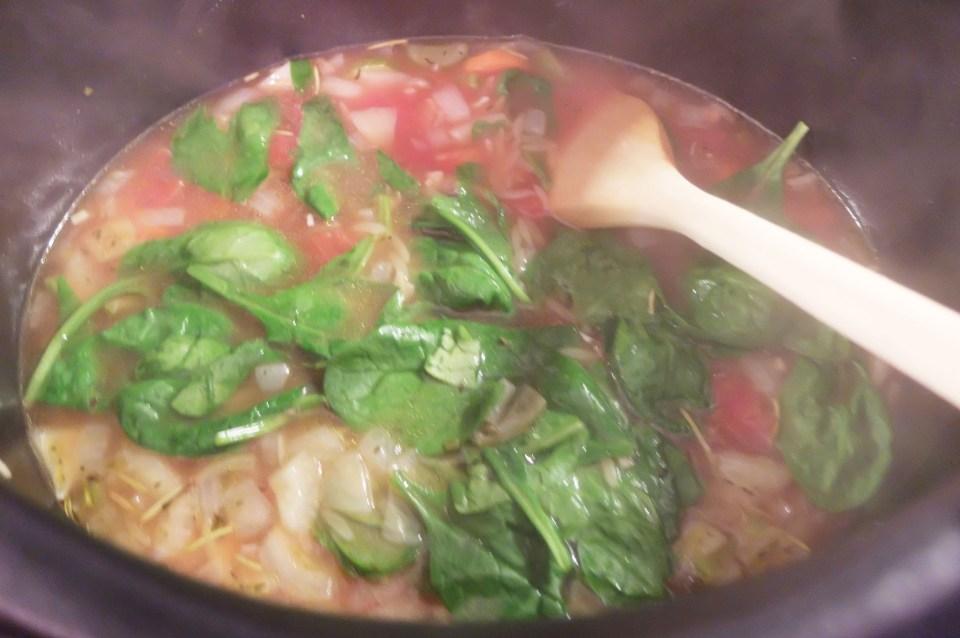 Orzo Vegetable Soup 6