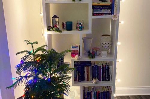 Bookcase-Christmas-Decor