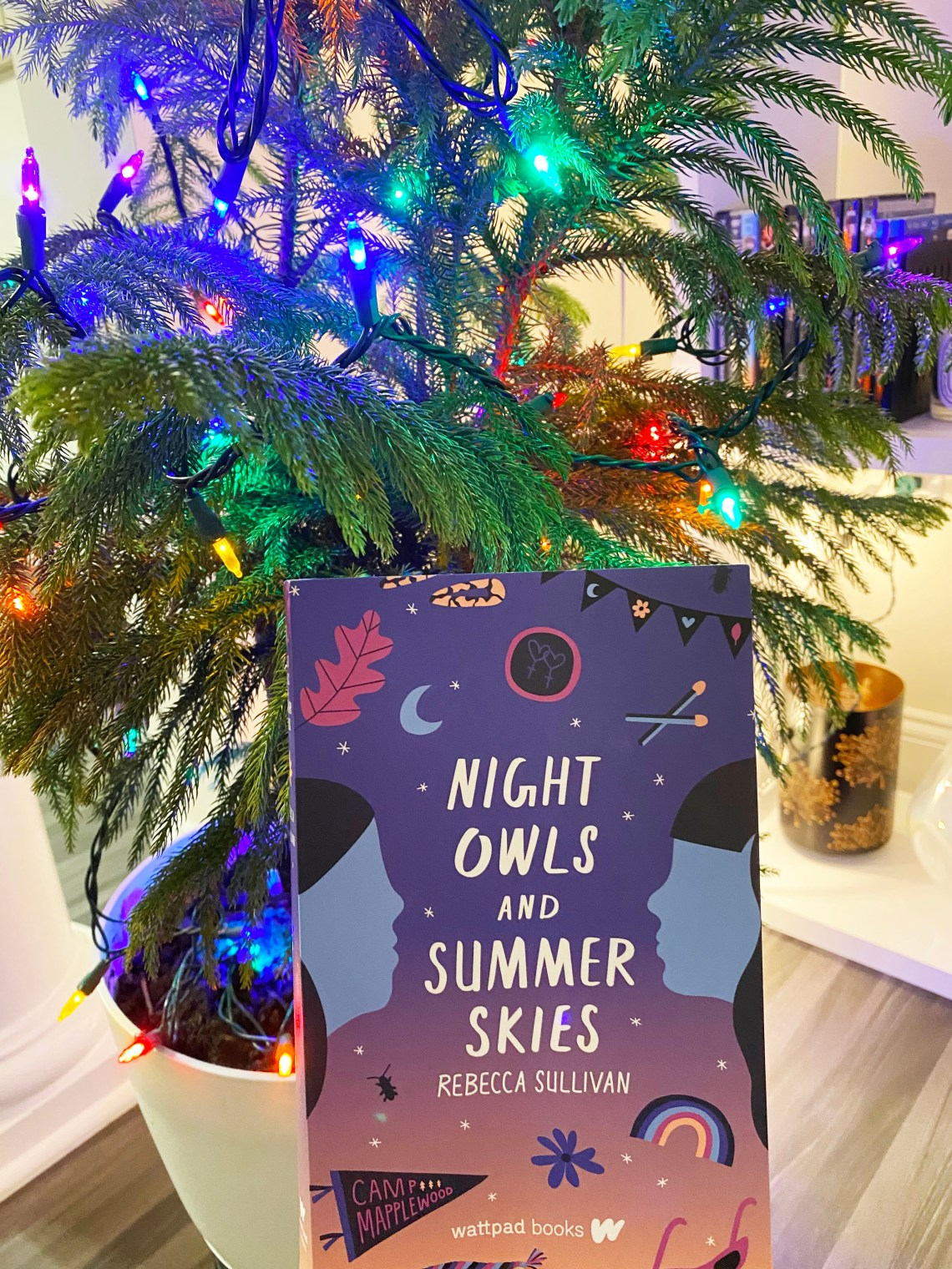 Night-Owls-and-Summer-Skies