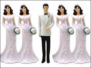 polygamy1