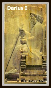 2014 King Darius