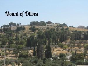 2014 Mount of Olives 1