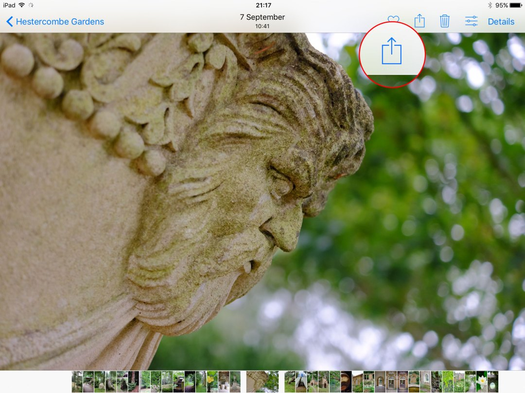 How to duplicate photos in Apple Photos