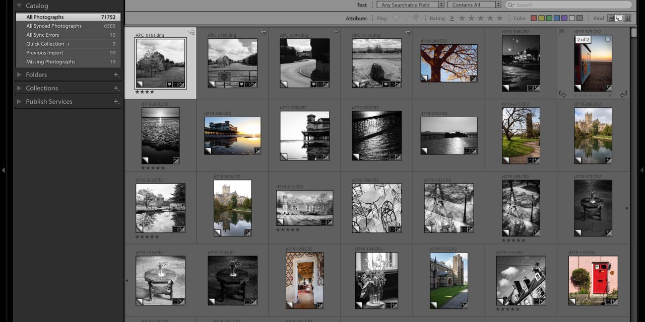 How many Virtual Copies do you have in Lightroom?