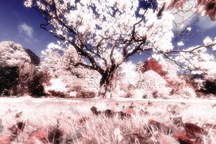 Infra red effect
