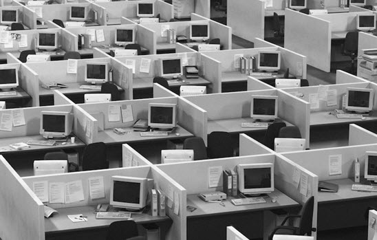 Rows of office cubicals