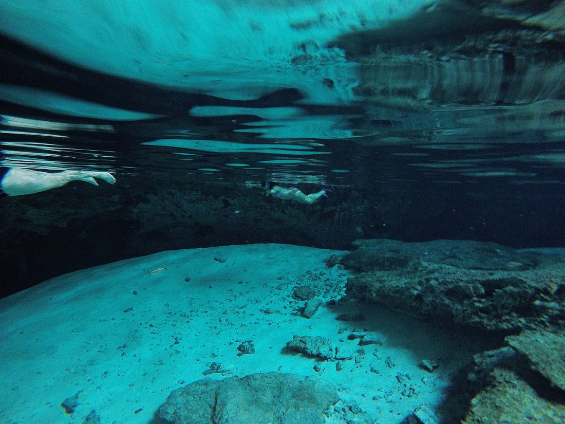 Postcard From | Visiting Cenotes in Mexico.