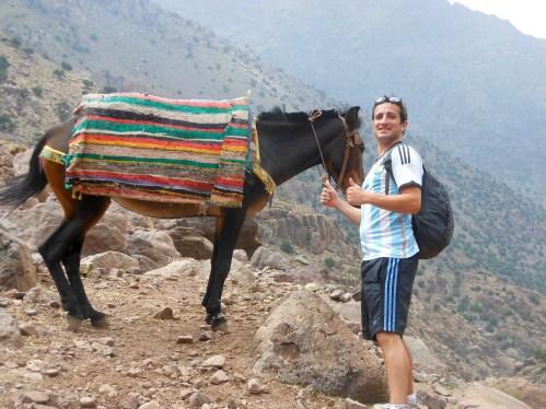 donkey tourism