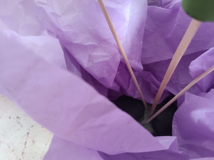 Floral foam placed in purple tissue paper in the flower pot end of the year teacher's gift.