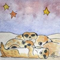 Sleepy Safari, Meerkats