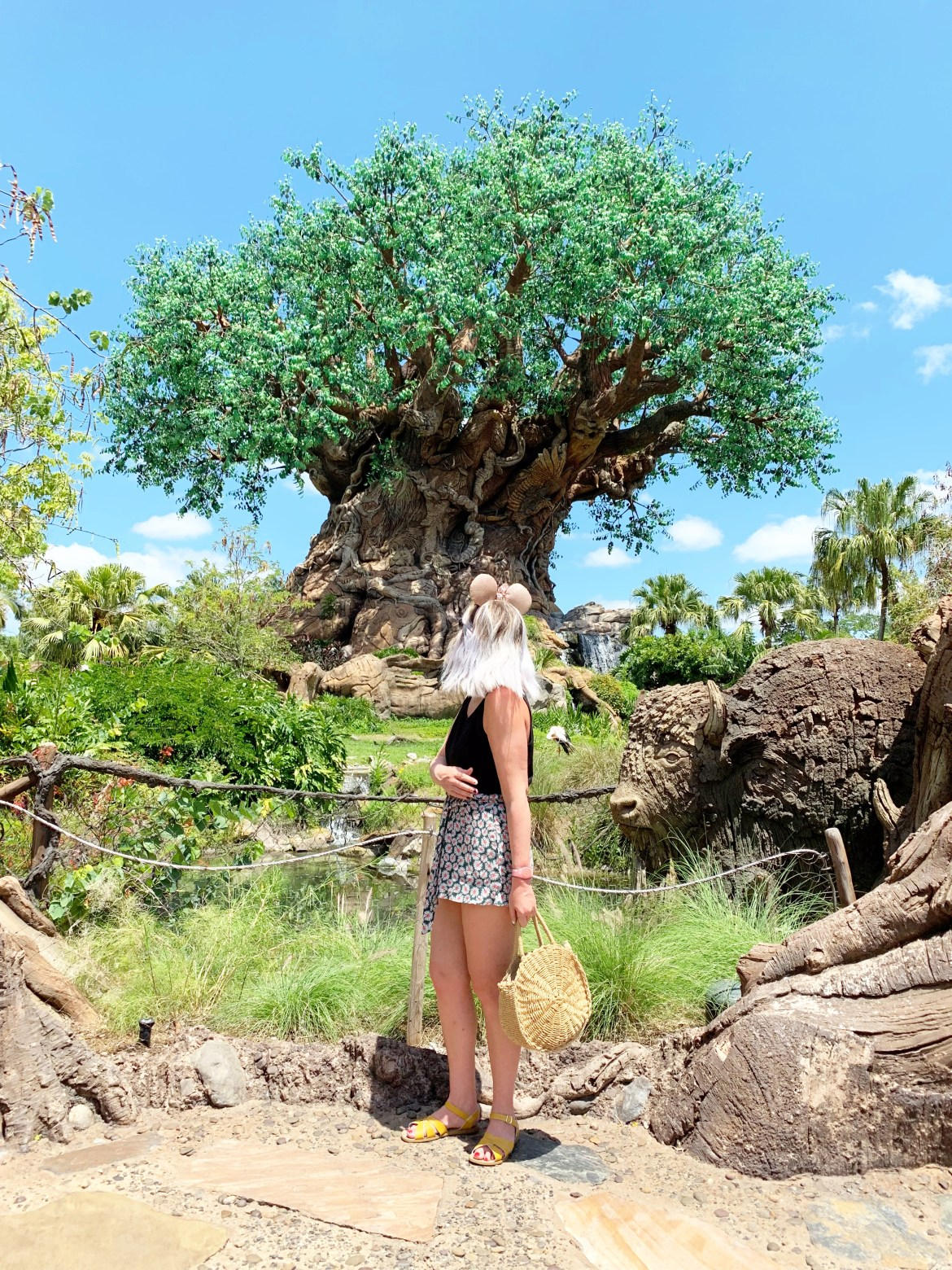 The Tree of Life, Magic Kingdom