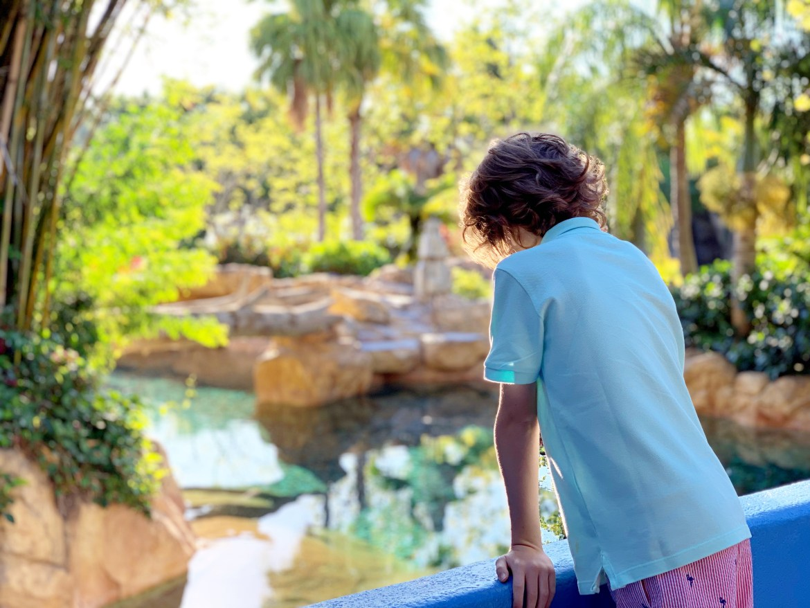 Discovery Cove - A day in paradise