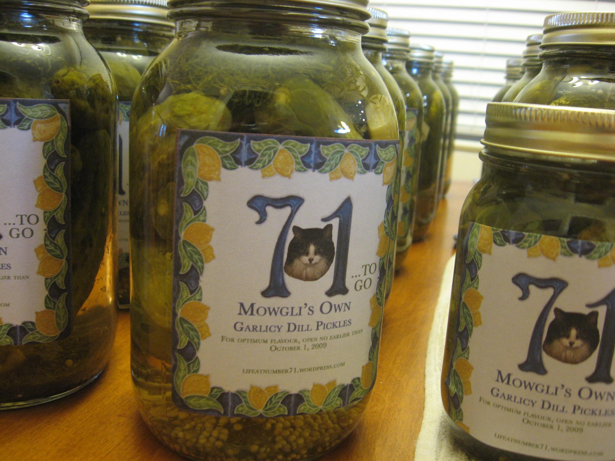 Mowgli's Own Garlicy Dill Pickles