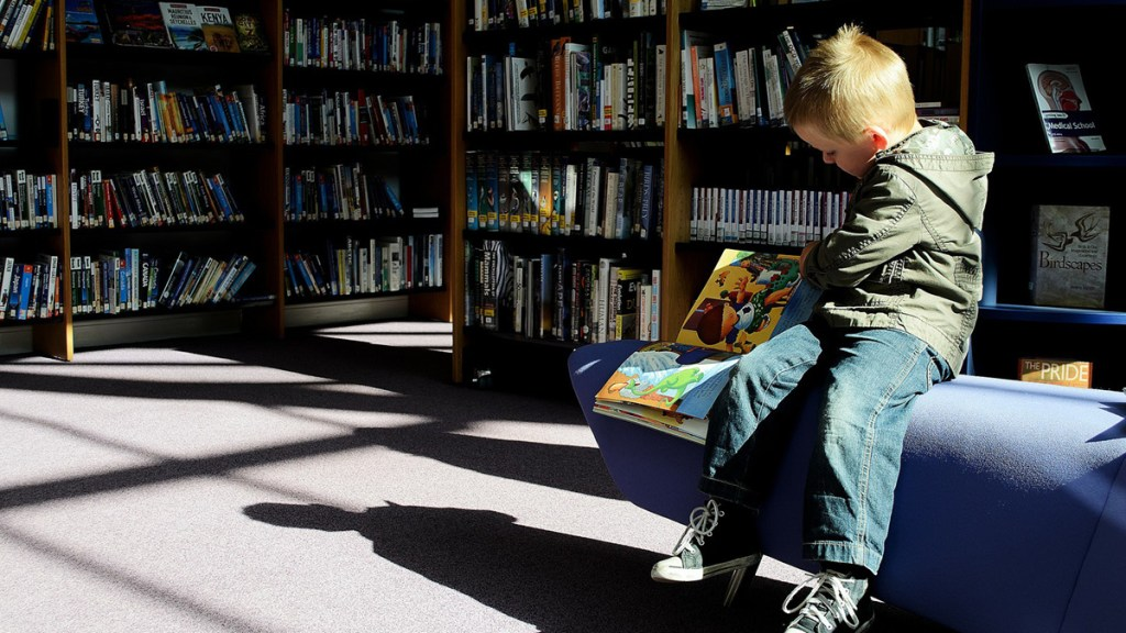 School libraries change children's lives and need generous funding