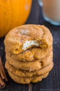 pumpkinsnickerdoodle2