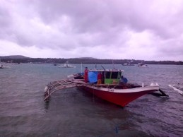 typhoon yolanda coming to bohol