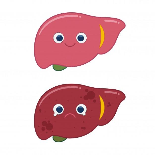 【一文認識脂肪肝】體檢發現後,你該做的5件事!