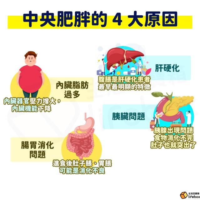 中央肥胖的4大原因