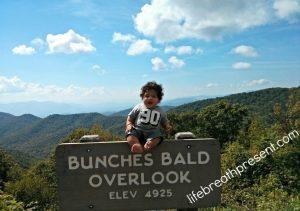 baby overlook