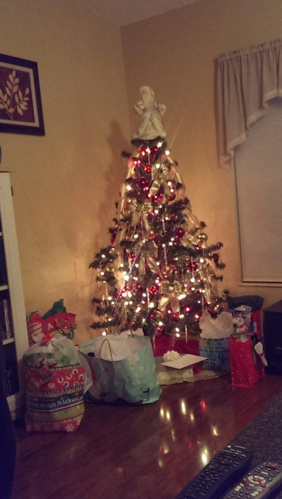Christmas 2013 - Florida