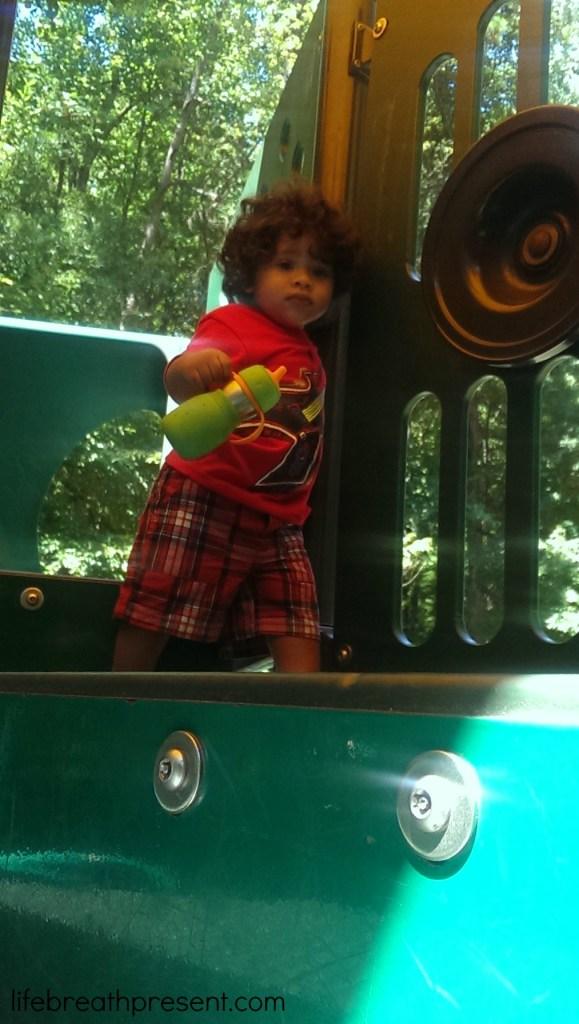 park, fun, playing, fun, family, baby, growing up