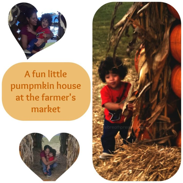farmers market, fun, play, family, 31 days of photography, pumpkin house