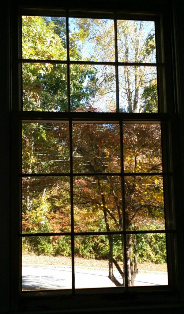 window view, bedroom, fall leaves, window