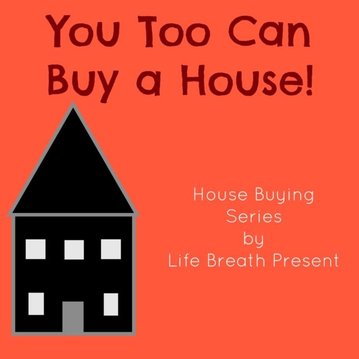 house, home, buying a house, financing a house, house hunting, series, buy a house, purchase your home
