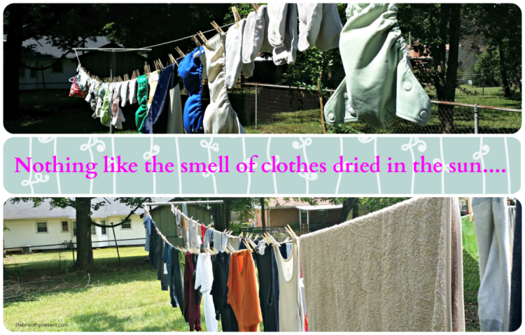 sun, clothes, clothesline, drying,