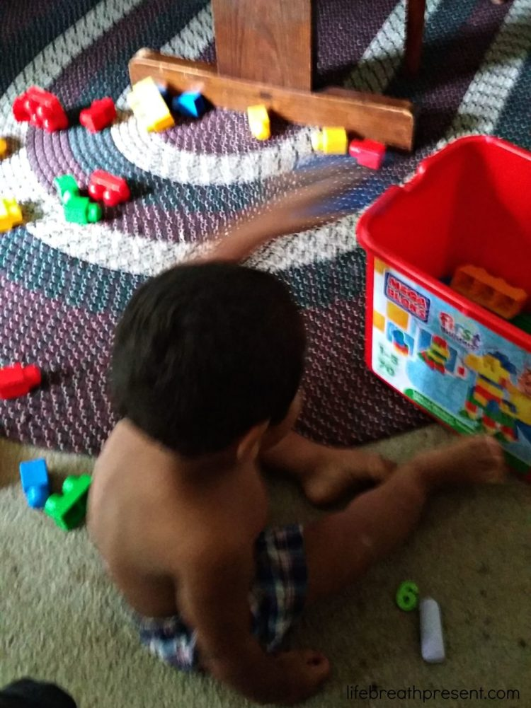 cleaning, life skills, toddlers, helping, toys