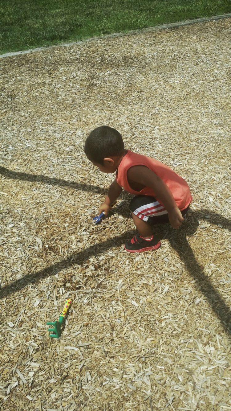 digging, playing, growing, park, fun, boy