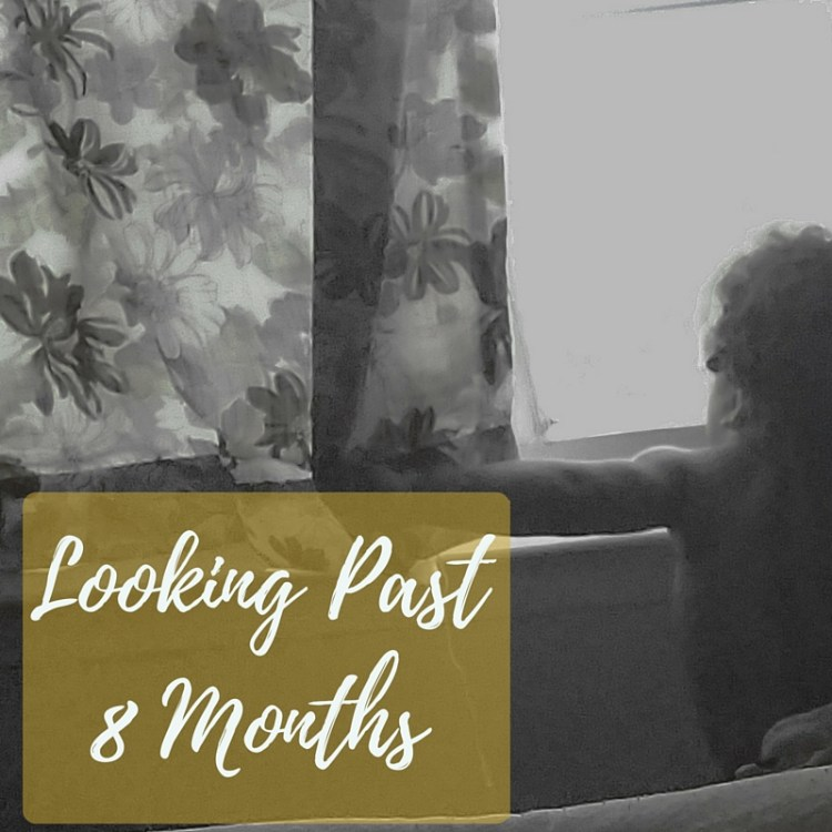 7 months, baby, growing, growing up, playing, family, different, looking, window