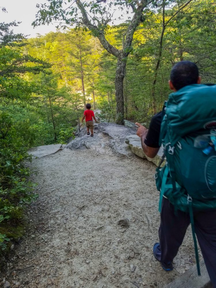 family, fun, mountains, forest, hiking, adventure, travel