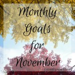 Changes in November {Goals}