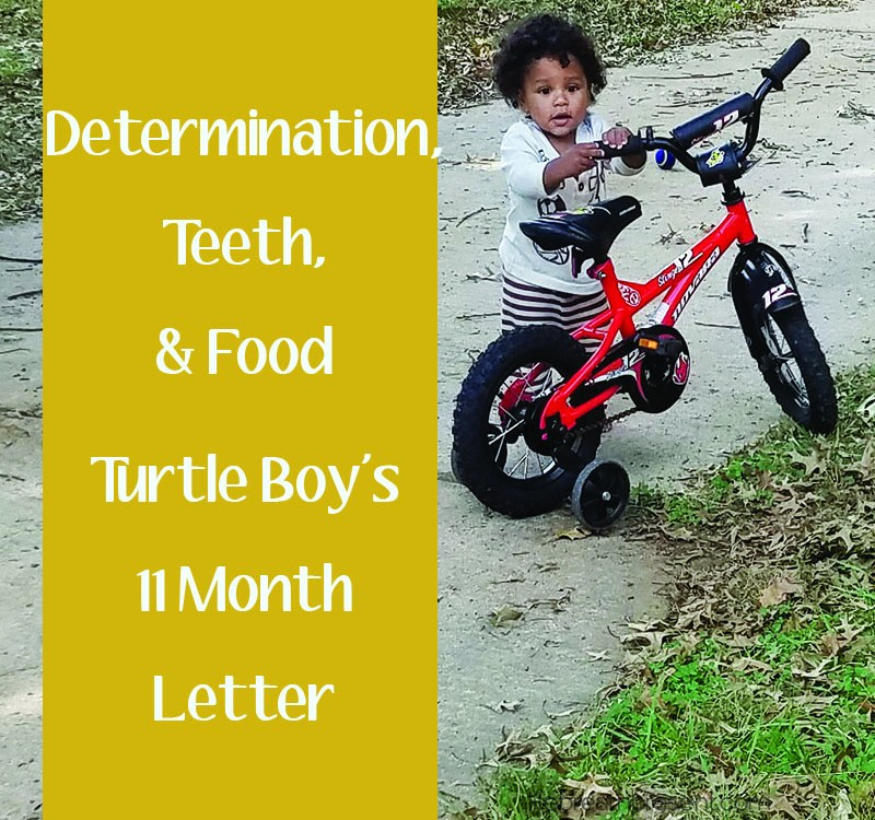 Teeth, Food, and Determination – 11 Months Growing