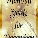 Goals During the Holidays {December 2016}