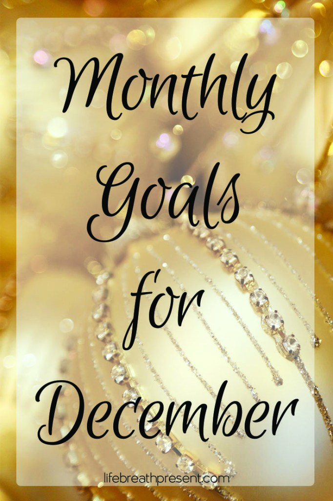 monthly goals, achievement, goal setting, goals, november, life, family, december, bauble, gold, christmas, holiday, travel, home, life