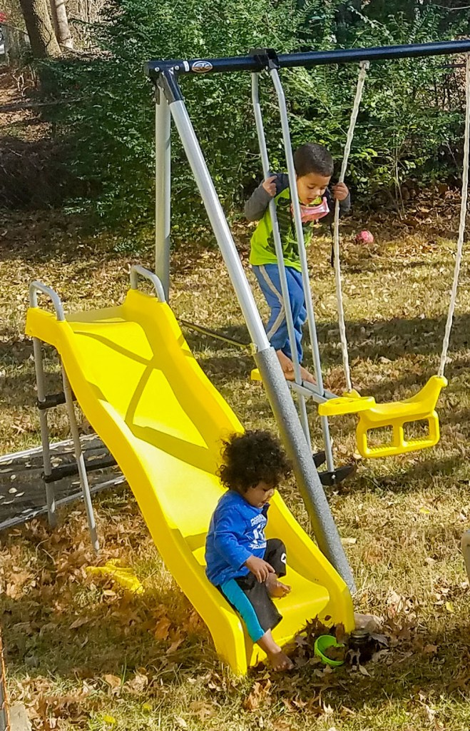 baby, toddler, boys, play, outside, fall, yard, swings, fun, family